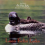Loon Echo Lake