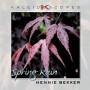Kaleidoscopes - Spring Rain - mp3 album download